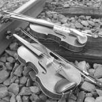Violins by Martin Schleske